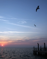 IMG_2909a