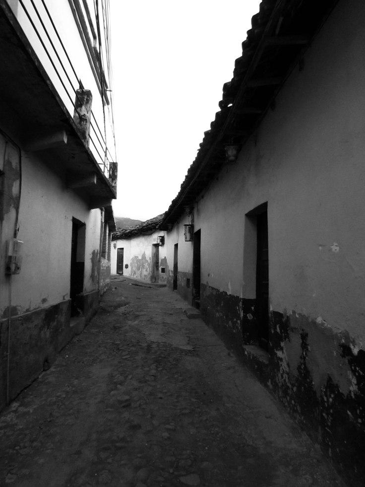 Escobar_A_Proyecto1#6